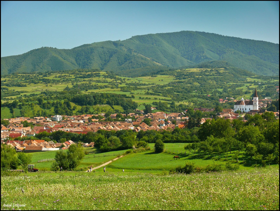 countryside-of-sibiu